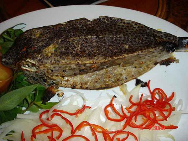 Mua bán cá bò hòm tươi ngon Nha Trang Phan Thiết nướng