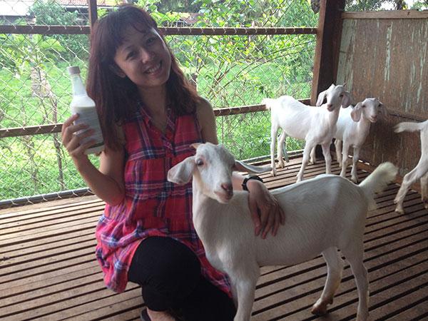 Mua bán sữa dê tươi nguyên chất 100% tại TpHCM, Sài Gòn